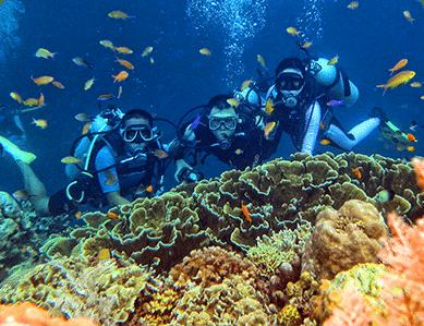 Diving sites Philippines