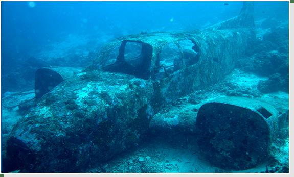 diving package cebu